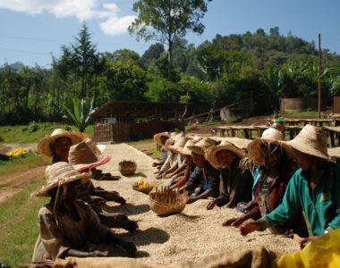 Foto Kooperation Äthiopien