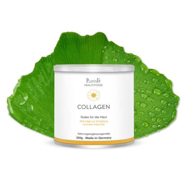 Collagen Trinkpulver Haut